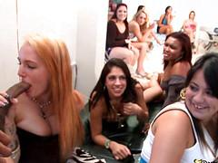 Красивые девушки берут в рот на вечеринке
